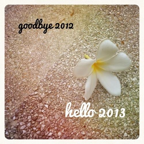 20121231-113807.jpg