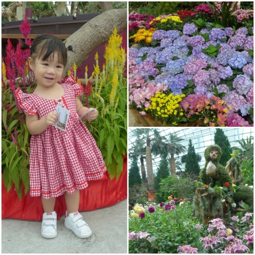 Garden By The Bay Annual Pass gardensthe bay – lady j's musings